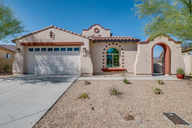 18132 W Thunderhill Place, Goodyear, AZ 85338 (MLS #5727040) :: Kelly Cook Real Estate Group