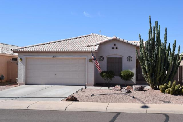 19650 N 110TH Lane, Sun City, AZ 85373 (MLS #5727042) :: Desert Home Premier