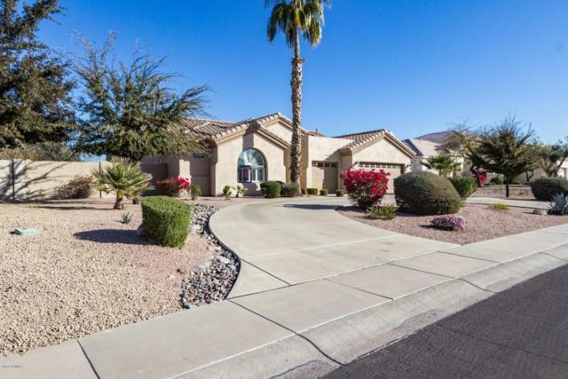 14026 W Litchfield Knoll, Litchfield Park, AZ 85340 (MLS #5727061) :: Devor Real Estate Associates