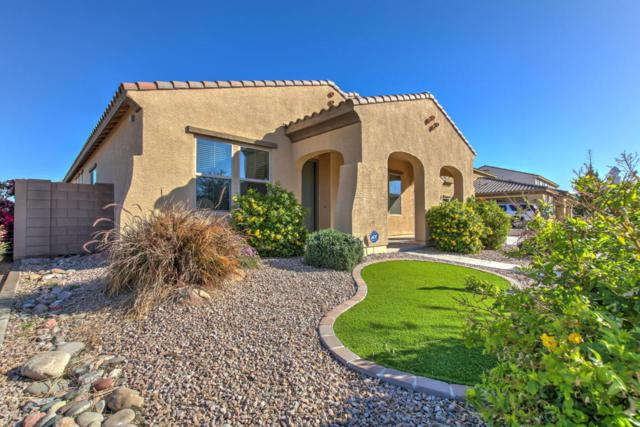 21006 E Misty Lane, Queen Creek, AZ 85142 (MLS #5727078) :: Yost Realty Group at RE/MAX Casa Grande