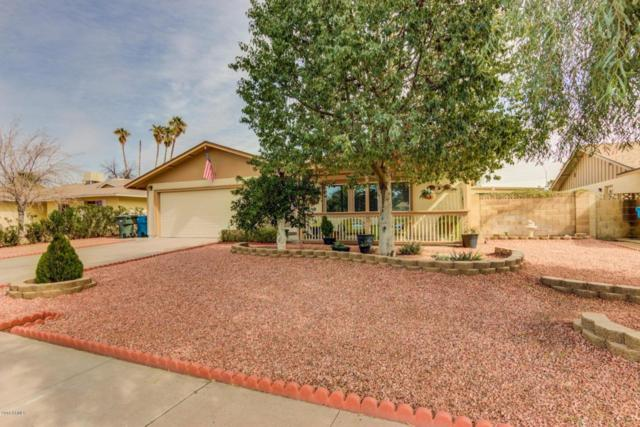 14649 N 35TH Drive, Phoenix, AZ 85053 (MLS #5727101) :: Yost Realty Group at RE/MAX Casa Grande