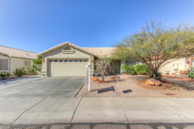 20268 N 52ND Drive, Glendale, AZ 85308 (MLS #5727119) :: Devor Real Estate Associates