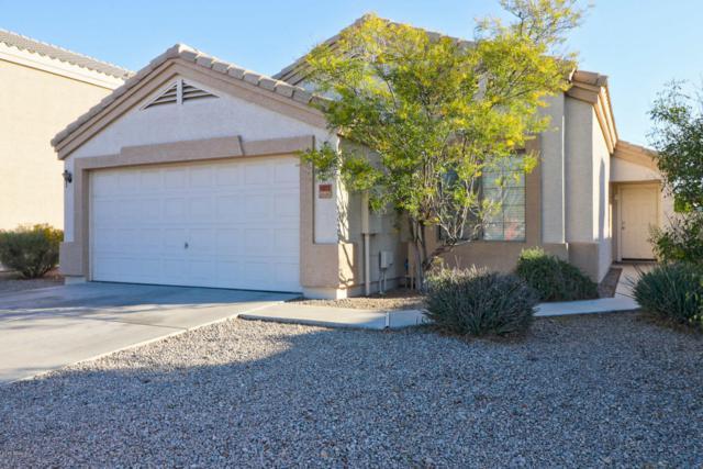 14913 N 126TH Avenue, El Mirage, AZ 85335 (MLS #5727123) :: Kelly Cook Real Estate Group