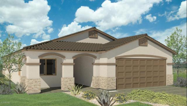 3828 W Leodra Lane, Phoenix, AZ 85041 (MLS #5727137) :: Occasio Realty