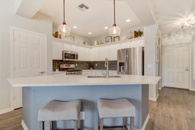 21161 E Stirrup Street, Queen Creek, AZ 85142 (MLS #5727138) :: Yost Realty Group at RE/MAX Casa Grande