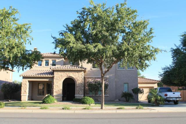 20260 E Camina Plata, Queen Creek, AZ 85142 (MLS #5727142) :: Essential Properties, Inc.