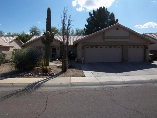 8657 W Meadow Drive, Peoria, AZ 85382 (MLS #5727169) :: Devor Real Estate Associates