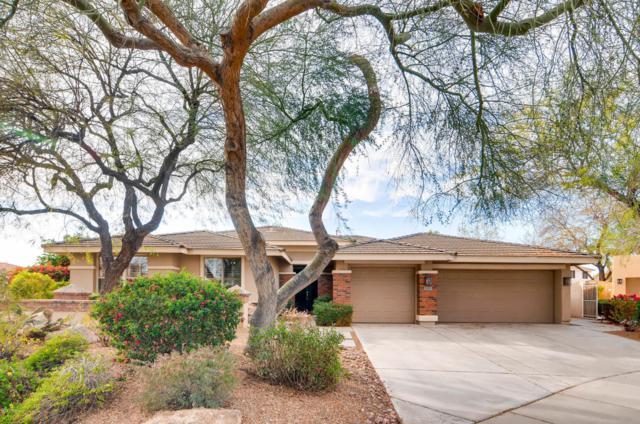 142 E Louis Way, Tempe, AZ 85284 (MLS #5727186) :: Essential Properties, Inc.