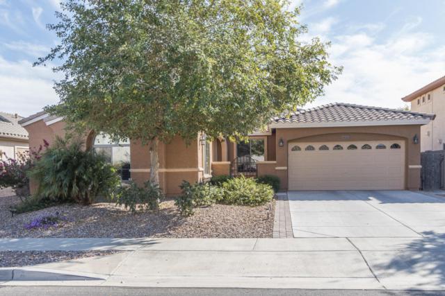 19251 W Pasadena Avenue, Litchfield Park, AZ 85340 (MLS #5727189) :: Kelly Cook Real Estate Group