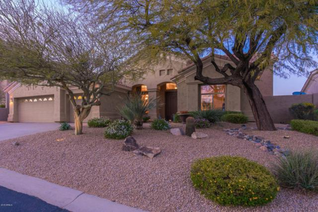 11530 E Desert Holly Drive, Scottsdale, AZ 85255 (MLS #5727204) :: Kelly Cook Real Estate Group
