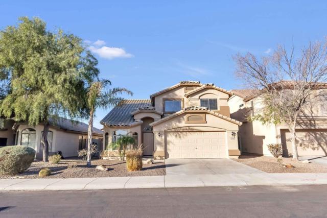 29756 N Desert Willow Boulevard, San Tan Valley, AZ 85143 (MLS #5727242) :: Kelly Cook Real Estate Group