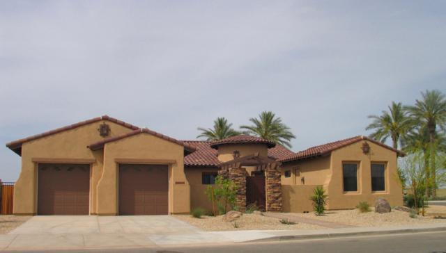 14306 W Cypress Street, Goodyear, AZ 85395 (MLS #5727246) :: Kelly Cook Real Estate Group