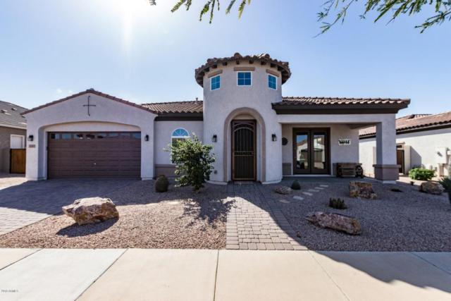 22481 E Pecan Lane, Queen Creek, AZ 85142 (MLS #5727308) :: Occasio Realty