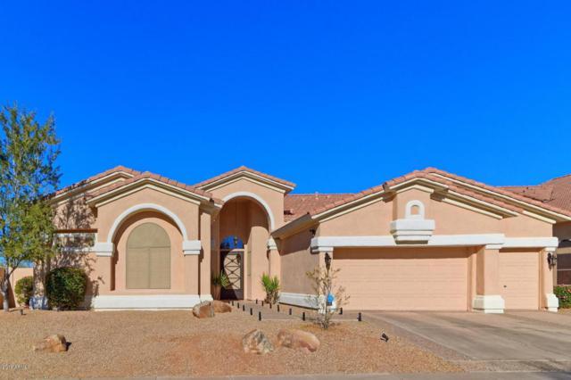 4404 E Hamblin Drive, Phoenix, AZ 85050 (MLS #5727373) :: RE/MAX Excalibur