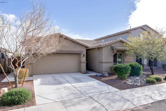 18061 W Post Drive, Surprise, AZ 85388 (MLS #5727374) :: Essential Properties, Inc.