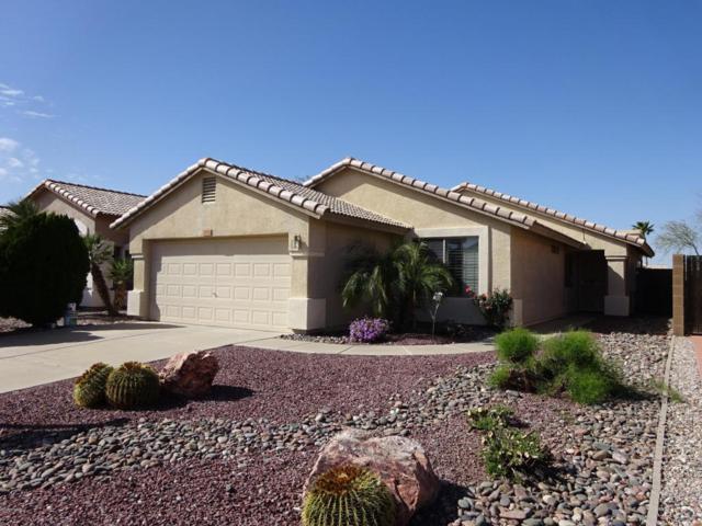 3750 S Conestoga Road, Apache Junction, AZ 85119 (MLS #5727406) :: Yost Realty Group at RE/MAX Casa Grande