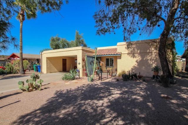 1238 E Mclellan Road, Mesa, AZ 85203 (MLS #5727414) :: Yost Realty Group at RE/MAX Casa Grande