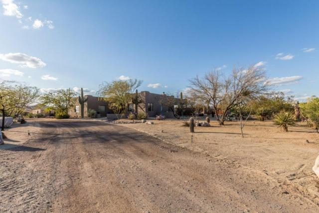 34912 N 10TH Street, Phoenix, AZ 85086 (MLS #5727456) :: Yost Realty Group at RE/MAX Casa Grande