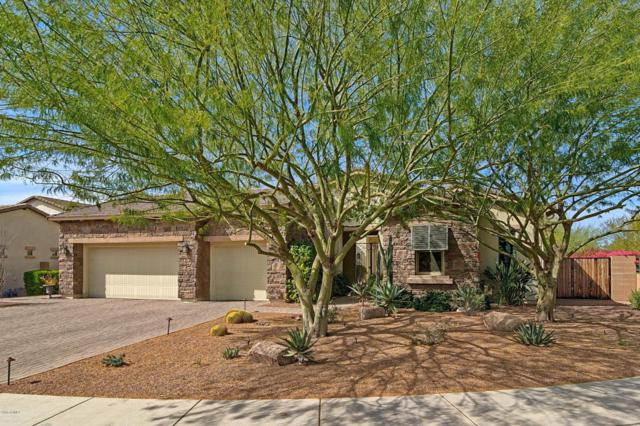 5428 E Milton Drive, Cave Creek, AZ 85331 (MLS #5727458) :: The Wehner Group