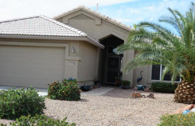 15099 W Verde Lane, Goodyear, AZ 85395 (MLS #5727543) :: Essential Properties, Inc.