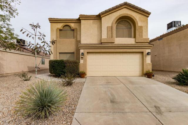 23401 N Desert Drive, Florence, AZ 85132 (MLS #5727554) :: Yost Realty Group at RE/MAX Casa Grande