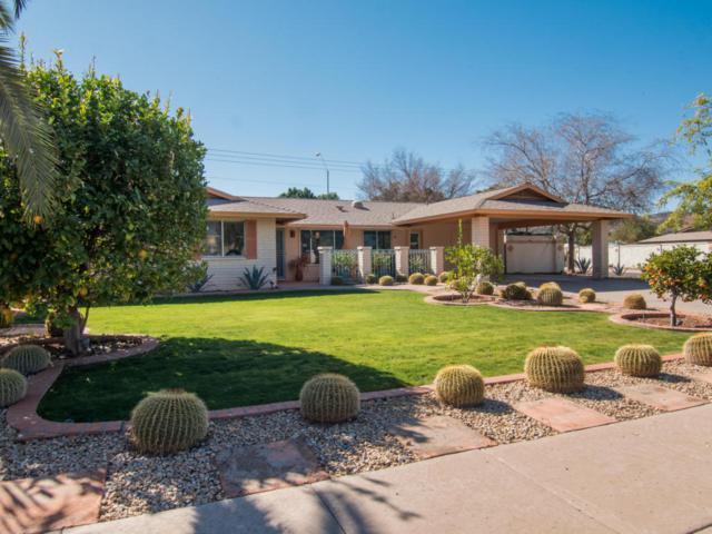 301 E Joan D Arc Avenue, Phoenix, AZ 85022 (MLS #5727604) :: Yost Realty Group at RE/MAX Casa Grande