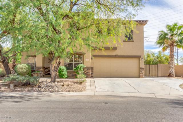 3149 S Sierra Heights, Mesa, AZ 85212 (MLS #5727609) :: Occasio Realty
