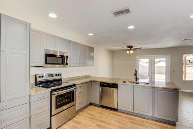 3736 W Villa Maria Drive, Glendale, AZ 85308 (MLS #5727624) :: Yost Realty Group at RE/MAX Casa Grande
