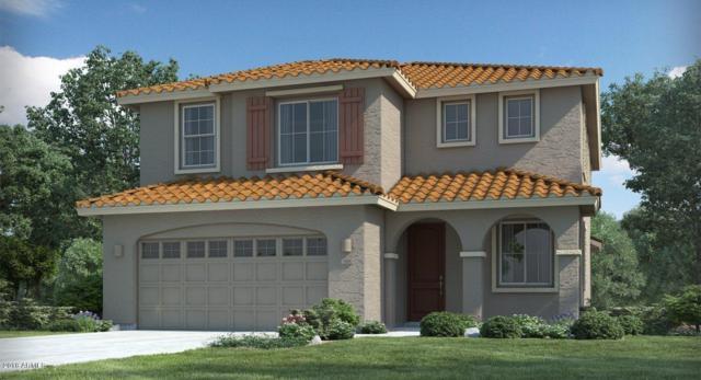 25129 N 53RD Lane, Phoenix, AZ 85083 (MLS #5727631) :: Yost Realty Group at RE/MAX Casa Grande