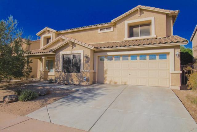 2406 W Florentine Road, Phoenix, AZ 85086 (MLS #5727640) :: Yost Realty Group at RE/MAX Casa Grande