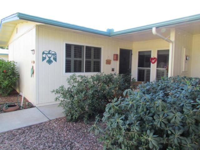 10519 W Wheatridge Drive, Sun City, AZ 85373 (MLS #5727670) :: Essential Properties, Inc.