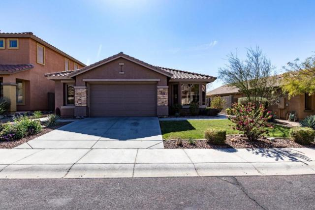 3635 W Denali Drive, Anthem, AZ 85086 (MLS #5727671) :: Yost Realty Group at RE/MAX Casa Grande