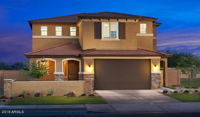 534 N 157TH Drive, Goodyear, AZ 85338 (MLS #5727672) :: Essential Properties, Inc.