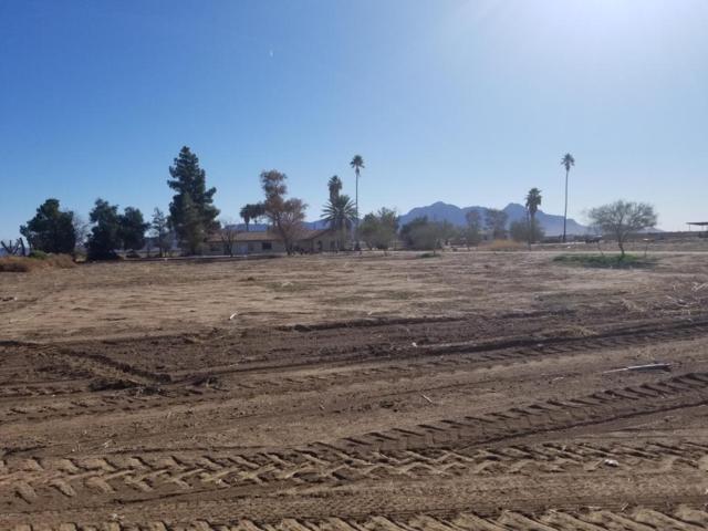 12105 S Highway 87, Eloy, AZ 85131 (MLS #5727679) :: Yost Realty Group at RE/MAX Casa Grande