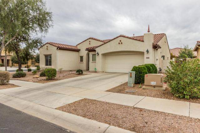 16155 W Clinton Street, Surprise, AZ 85379 (MLS #5727686) :: The AZ Performance Realty Team