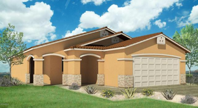 6511 S 38th Lane, Phoenix, AZ 85041 (MLS #5727700) :: Occasio Realty