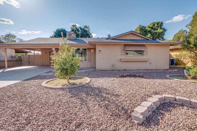 2620 S Holbrook Lane, Tempe, AZ 85282 (MLS #5727706) :: EXIT Realty Living - Scottsdale
