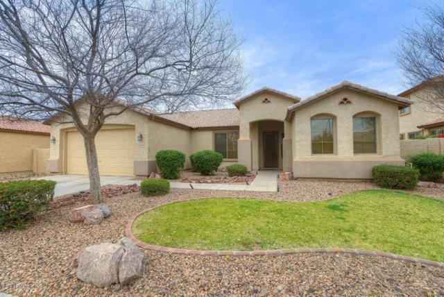 4496 N 151ST Drive, Goodyear, AZ 85395 (MLS #5727721) :: Essential Properties, Inc.