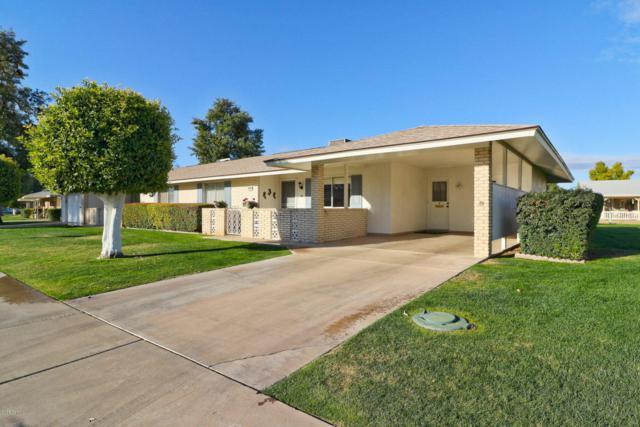 10511 W El Capitan Circle, Sun City, AZ 85351 (MLS #5727808) :: Essential Properties, Inc.