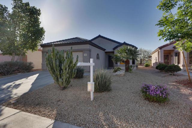 16385 W Rock Springs Lane, Surprise, AZ 85374 (MLS #5727820) :: The Everest Team at My Home Group