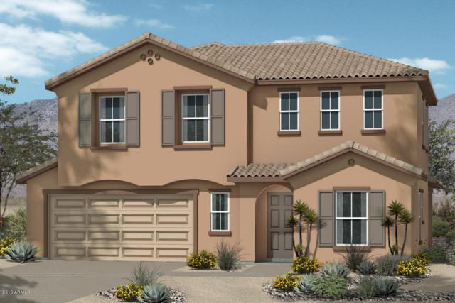 16436 W Culver Street, Goodyear, AZ 85338 (MLS #5727846) :: Essential Properties, Inc.