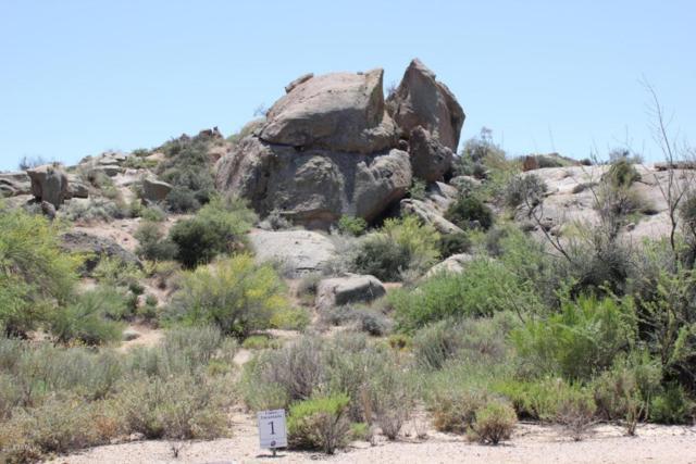 10799 E Hedgehog Place, Scottsdale, AZ 85262 (MLS #5727853) :: RE/MAX Excalibur