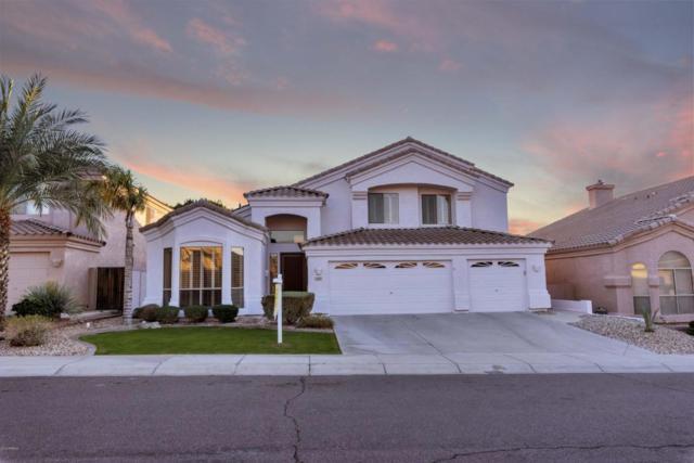 1147 E Cottonwood Lane, Phoenix, AZ 85048 (MLS #5727866) :: The Daniel Montez Real Estate Group