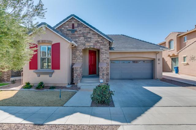 15133 W Aster Drive, Surprise, AZ 85379 (MLS #5727889) :: Essential Properties, Inc.