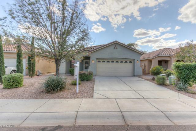 2797 W San Carlos Lane, Queen Creek, AZ 85142 (MLS #5727917) :: Yost Realty Group at RE/MAX Casa Grande