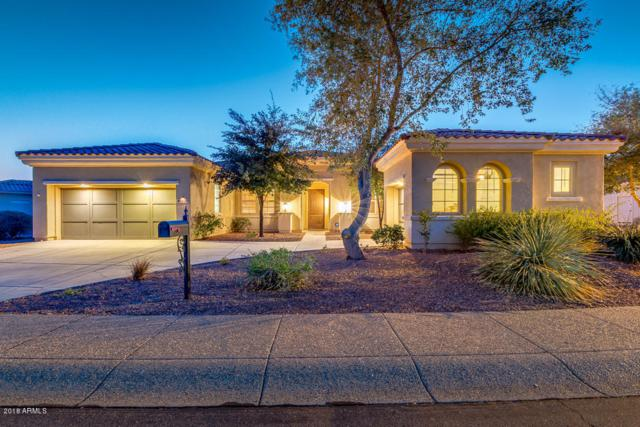 23116 N Padaro Court, Sun City West, AZ 85375 (MLS #5727922) :: Yost Realty Group at RE/MAX Casa Grande