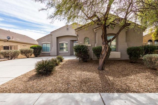 17383 W Hilton Avenue, Goodyear, AZ 85338 (MLS #5727923) :: Essential Properties, Inc.