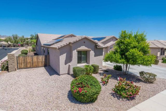 22786 W Ashleigh Marie Drive, Buckeye, AZ 85326 (MLS #5727927) :: Essential Properties, Inc.