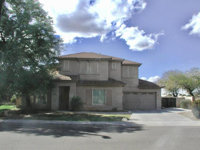 3419 E Rosa Lane, Gilbert, AZ 85297 (MLS #5727935) :: Santizo Realty Group