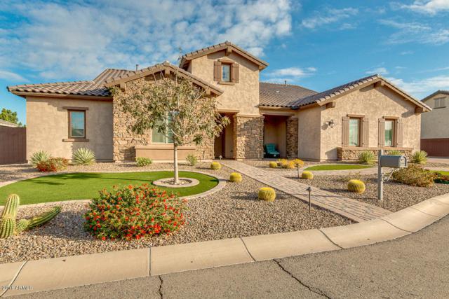 22066 E Duncan Court, Queen Creek, AZ 85142 (MLS #5727961) :: Lux Home Group at  Keller Williams Realty Phoenix